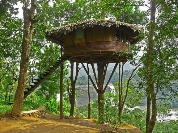 Jungle Tiny Treehouse
