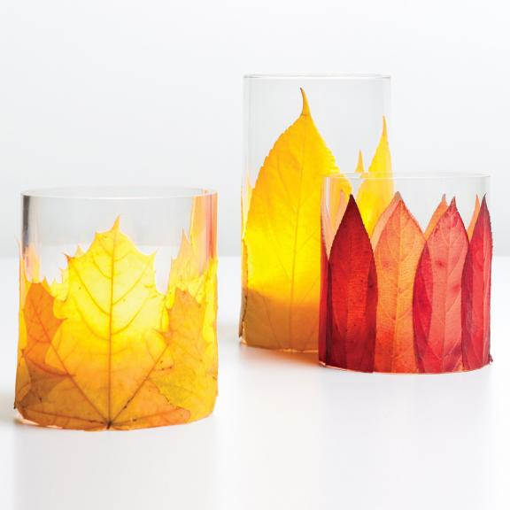 Simple and Graphic Fall Leaves