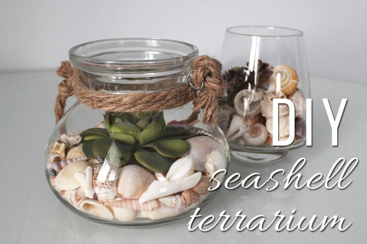 A Small Seashell Terrarium Centerpiece