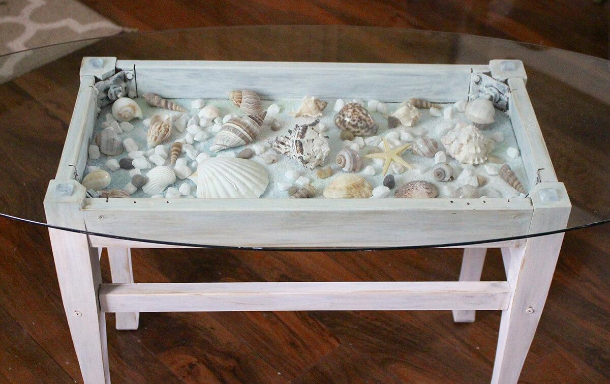 Bed of Seashells in a Coffee Table
