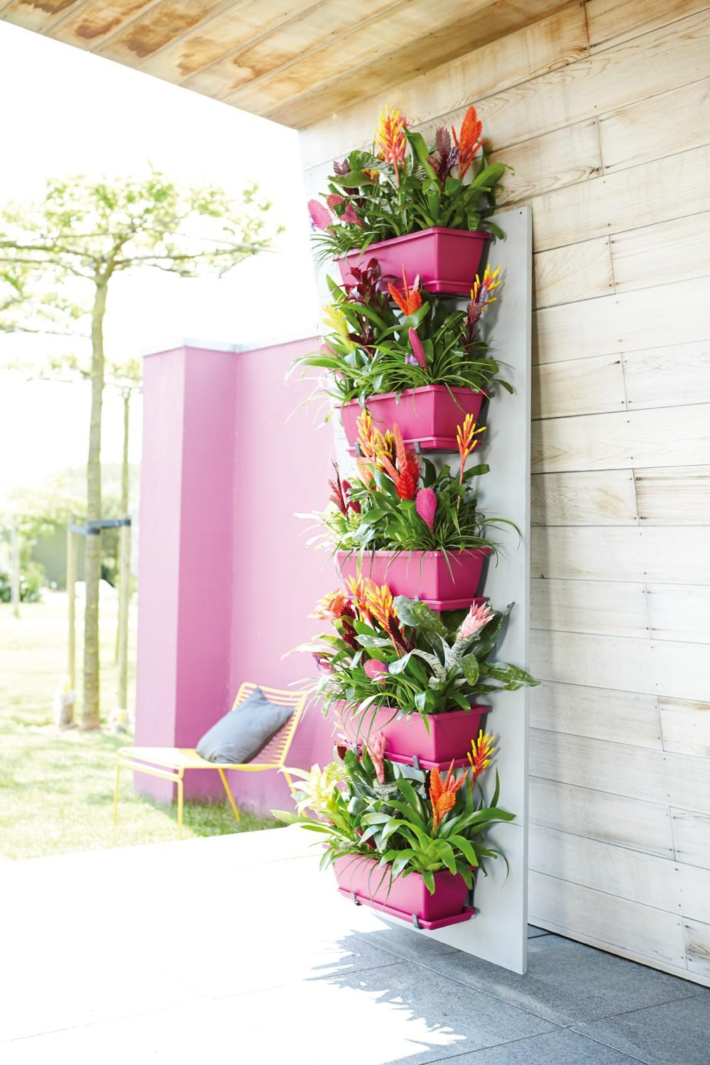 Bright Pink Adds a Pop of Color and Accents Vibrant Bromeliads