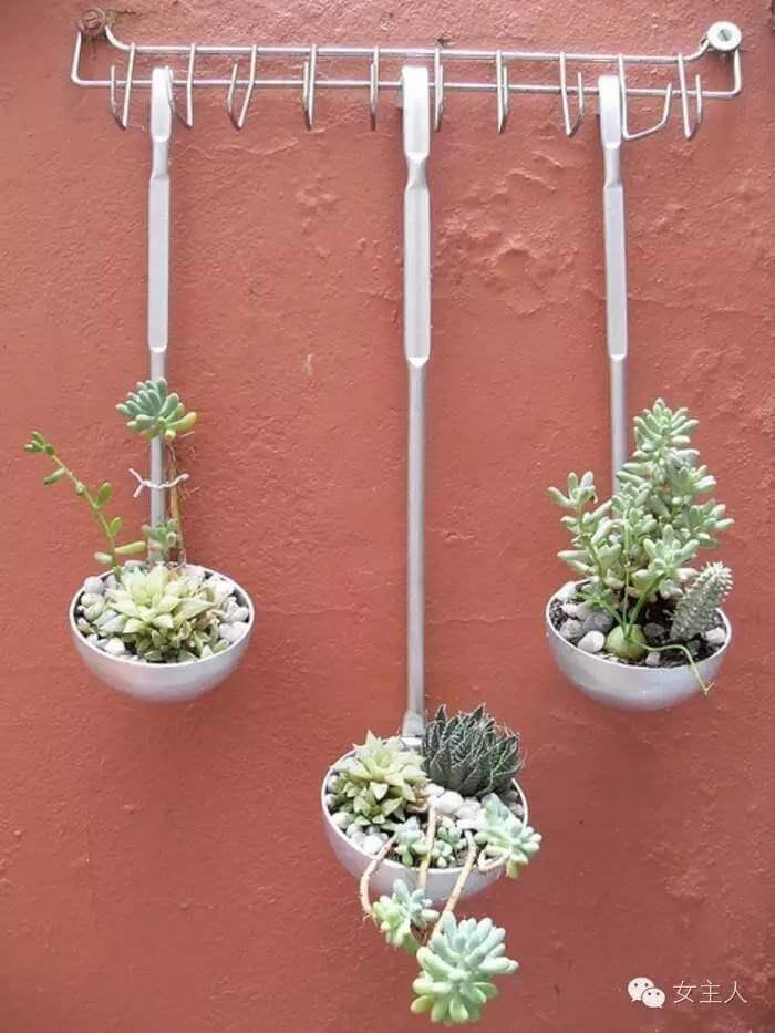 DIY Kitchen Utensil Wall Planter for Succulents